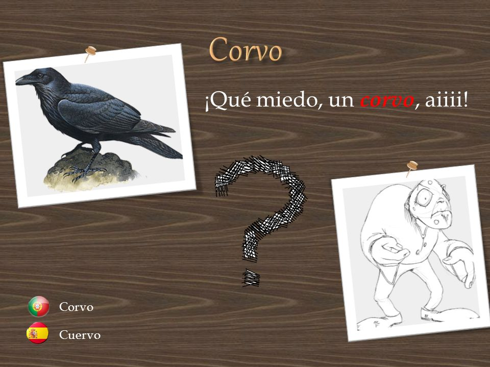 Corvo ¡Qué miedo, un corvo, aiiii! Cuervo Corvo