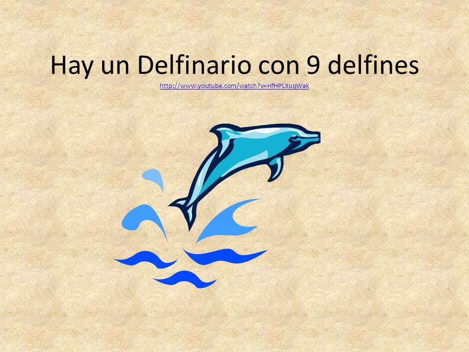 Hay un Delfinario con 9 delfines http://www. youtube. com/watch
