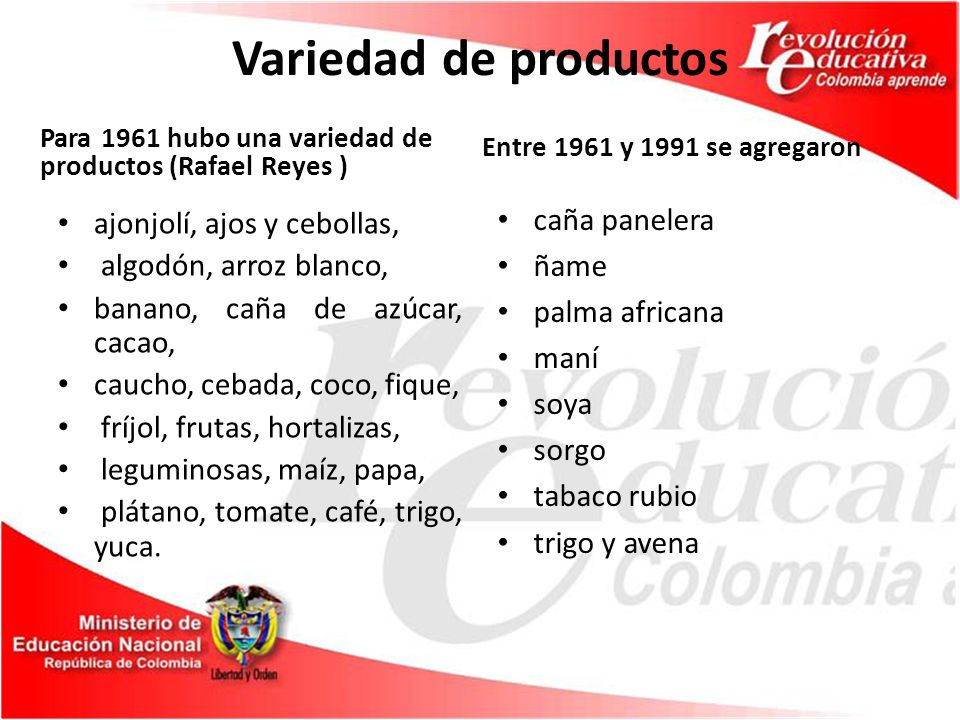 Variedad de productos caña panelera ajonjolí, ajos y cebollas, ñame