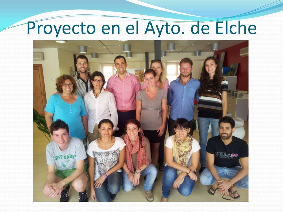 Proyecto en el Ayto. de Elche