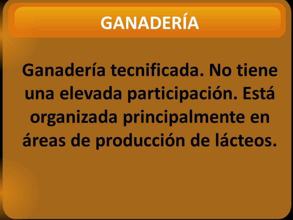 GANADERÍA Ganadería tecnificada. No tiene una elevada participación.