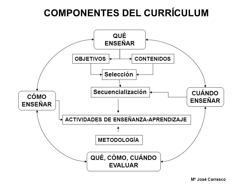 COMPONENTES DEL CURRÍCULUM
