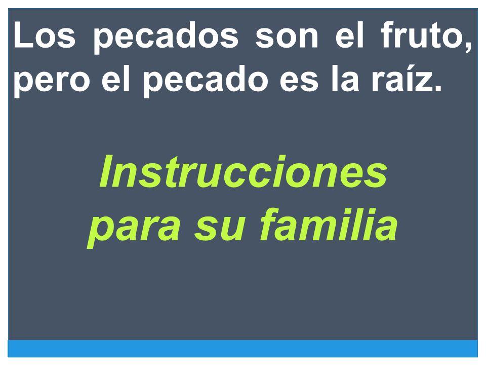 Instrucciones para su familia