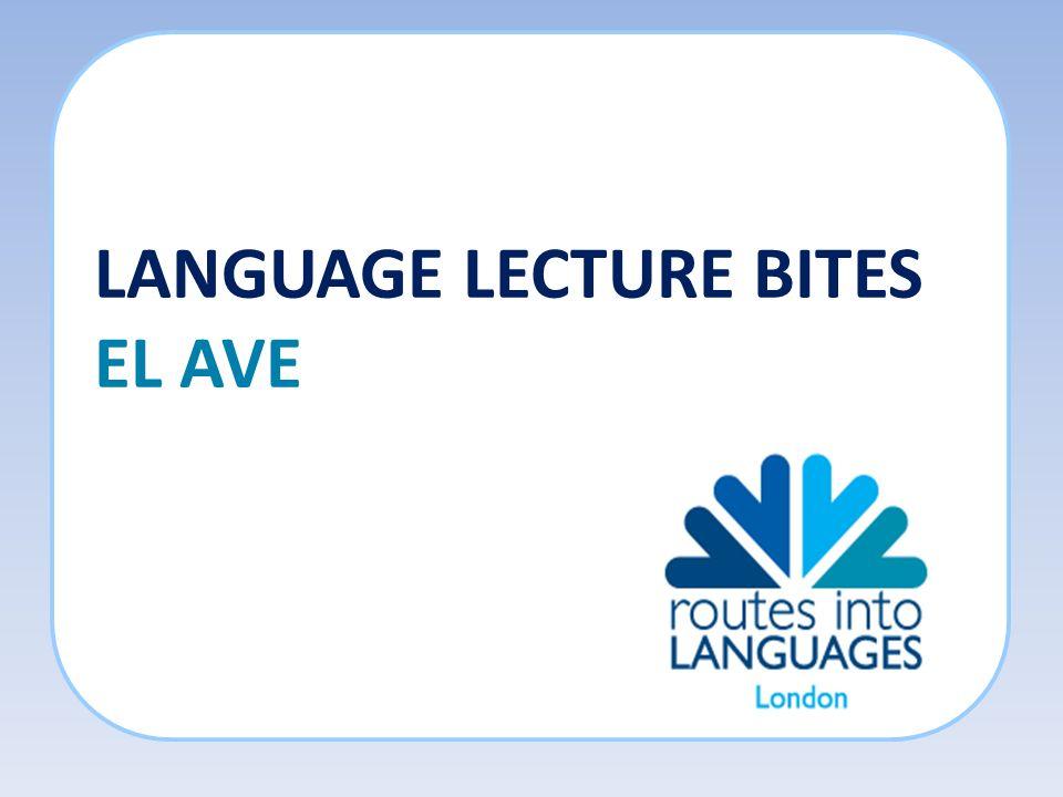 LANGUAGE LECTURE BITES