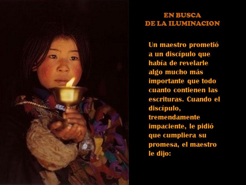 EN BUSCA DE LA ILUMINACION.