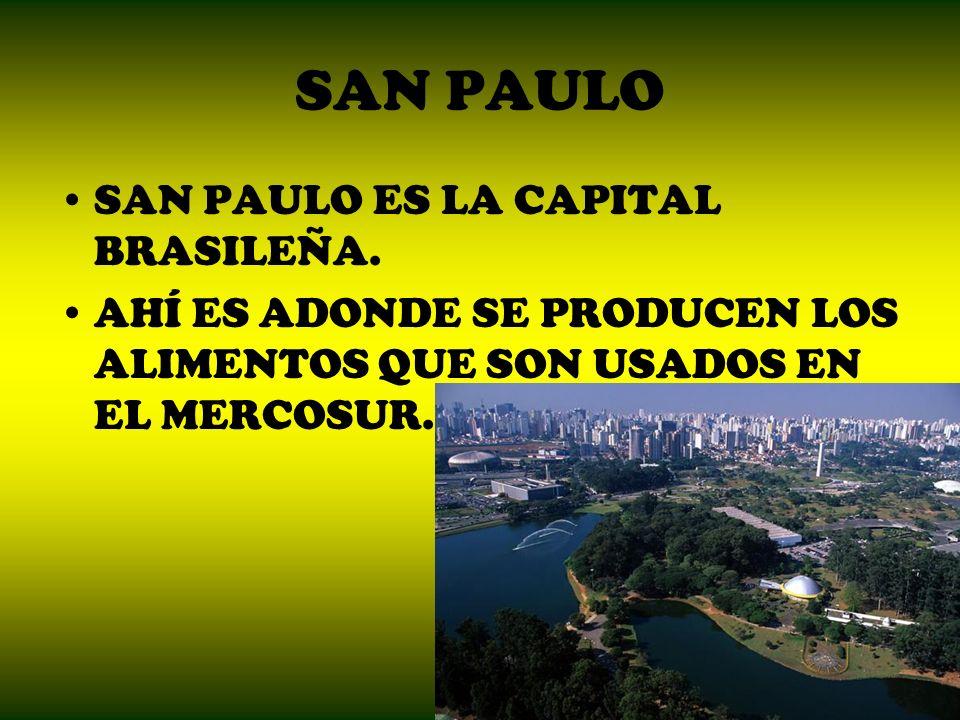 SAN PAULO SAN PAULO ES LA CAPITAL BRASILEÑA.
