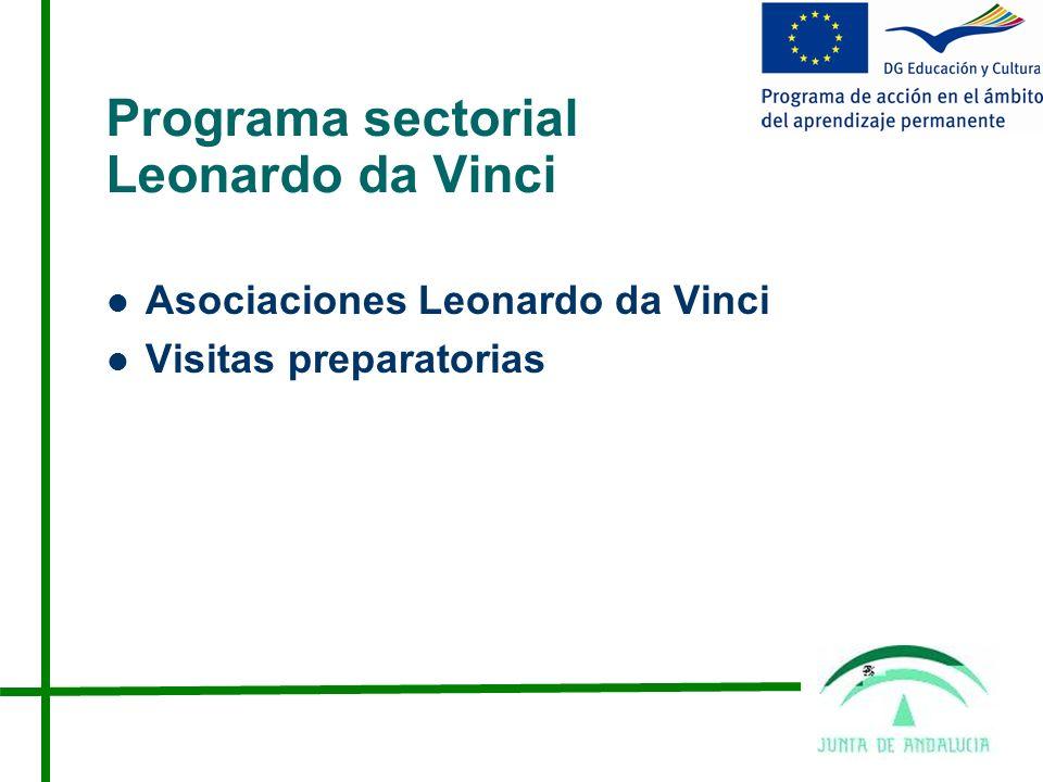 Programa sectorial Leonardo da Vinci
