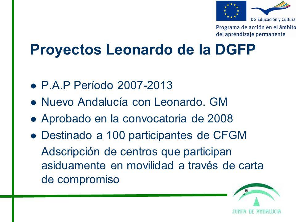Proyectos Leonardo de la DGFP