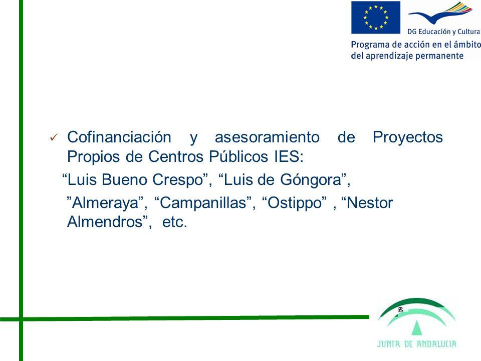 Cofinanciación y asesoramiento de Proyectos Propios de Centros Públicos IES:
