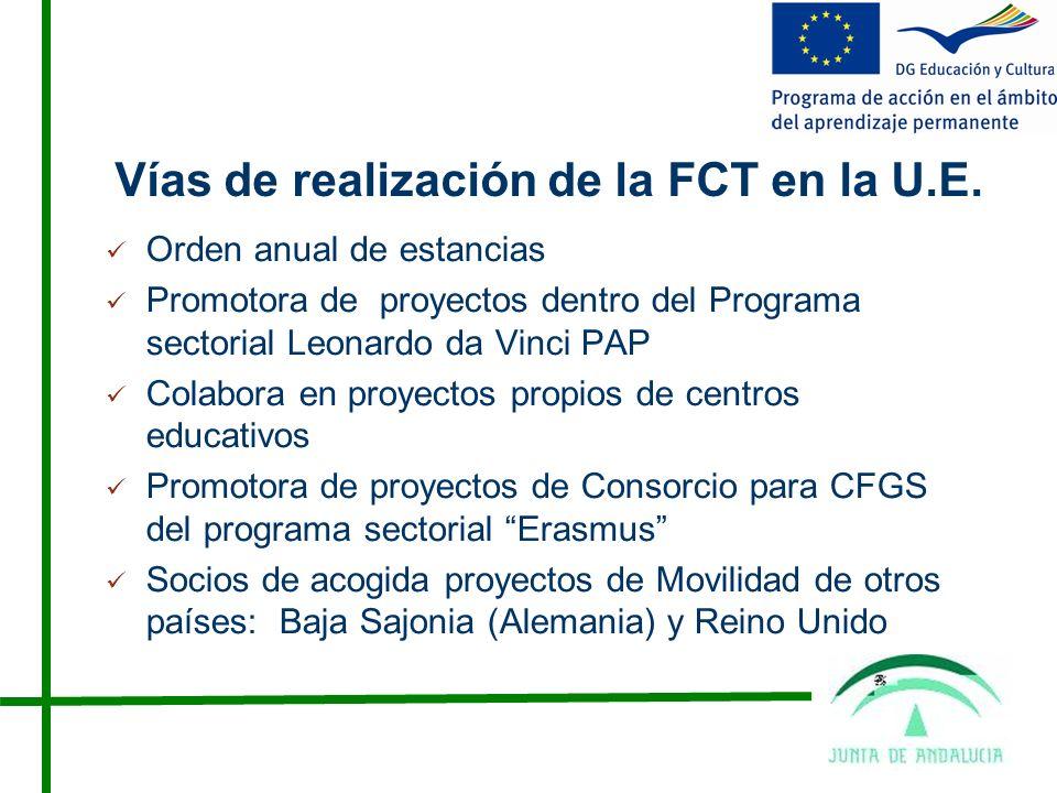 Vías de realización de la FCT en la U.E.