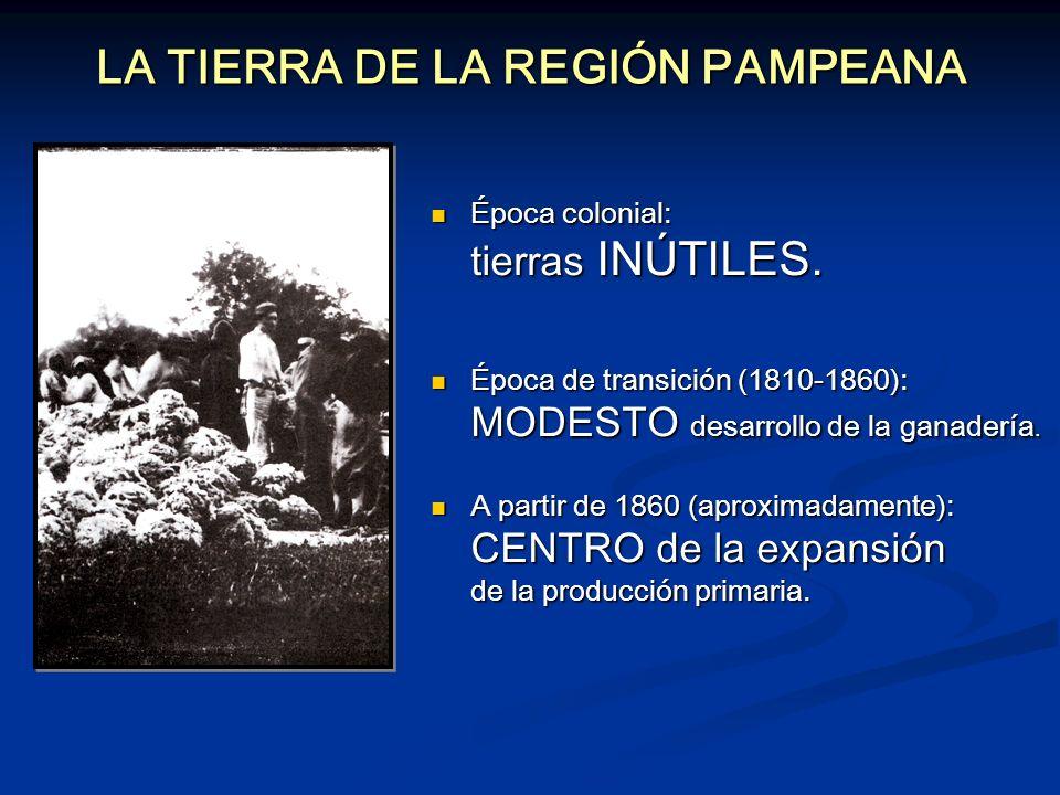 LA TIERRA DE LA REGIÓN PAMPEANA