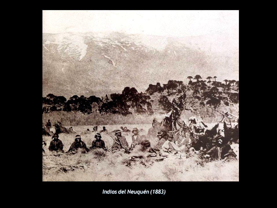 Indios del Neuquén (1883)