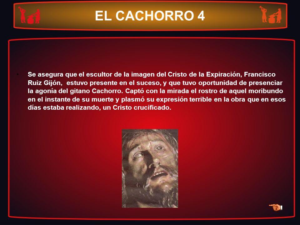 EL CACHORRO 4