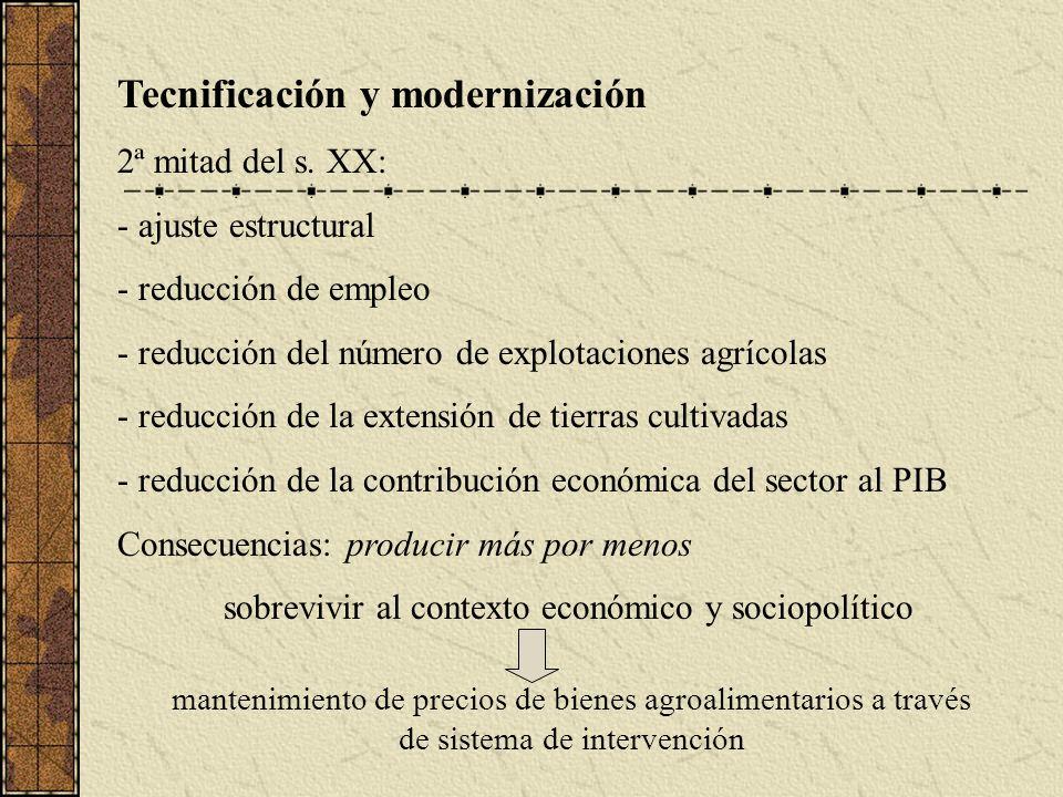 Tecnificación y modernización