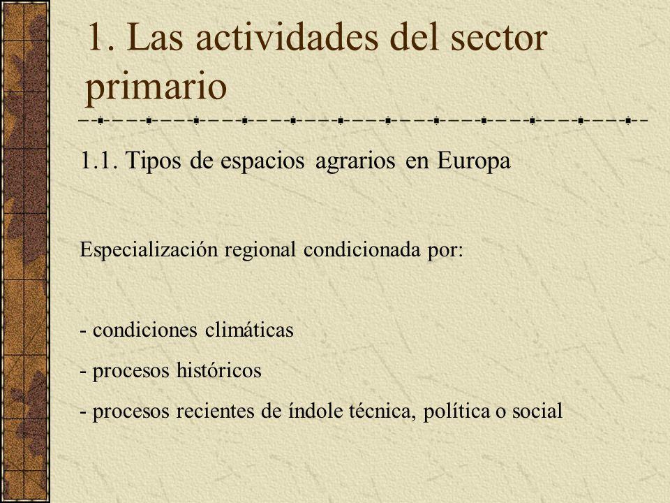 1. Las actividades del sector primario