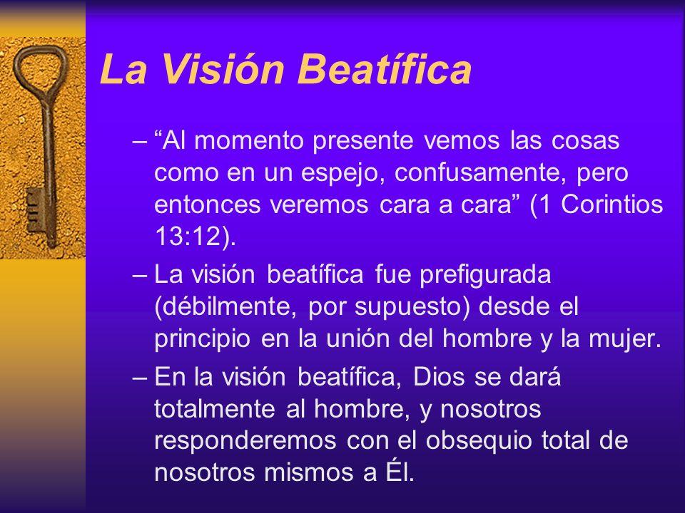 La Visión Beatífica Al momento presente vemos las cosas como en un espejo, confusamente, pero entonces veremos cara a cara (1 Corintios 13:12).