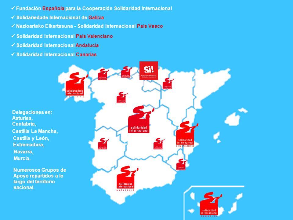  Fundación Española para la Cooperación Solidaridad Internacional