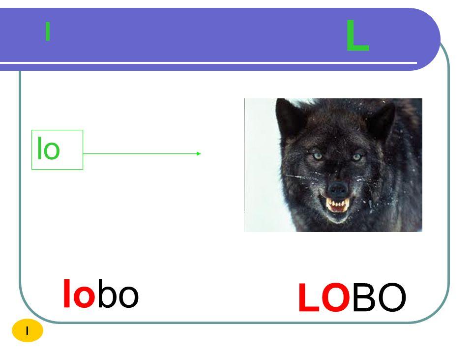 L l lo lobo LOBO I