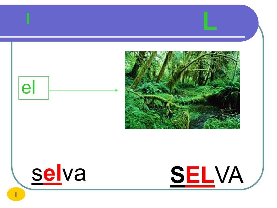 L l el selva SELVA I