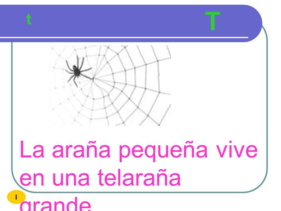 T t La araña pequeña vive en una telaraña grande I
