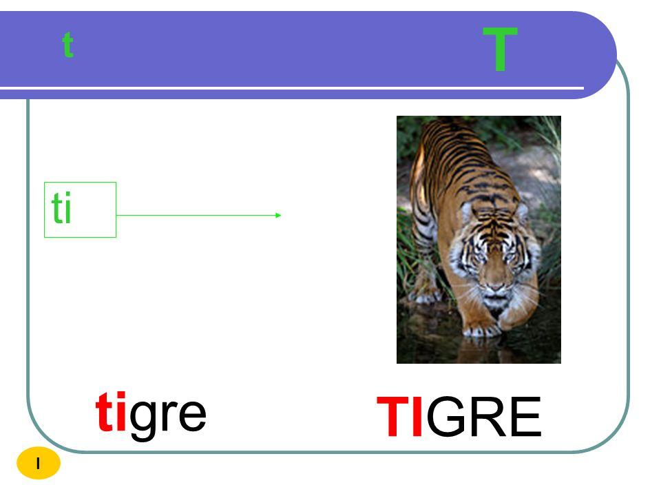 T t ti tigre TIGRE I