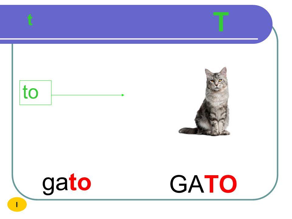 T t to gato GATO I
