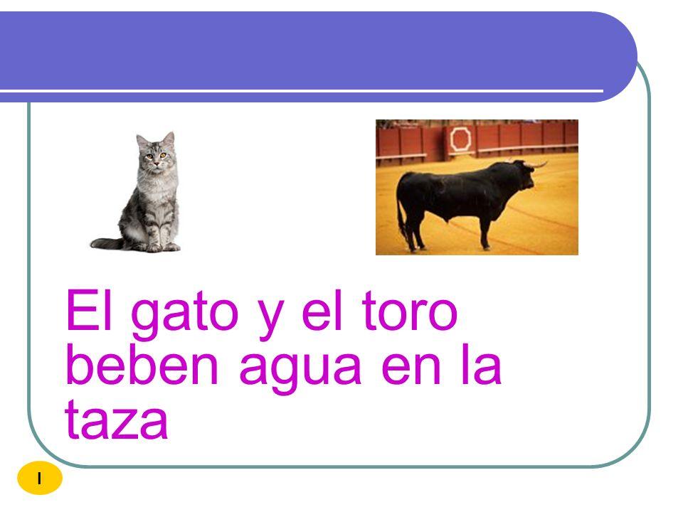El gato y el toro beben agua en la taza