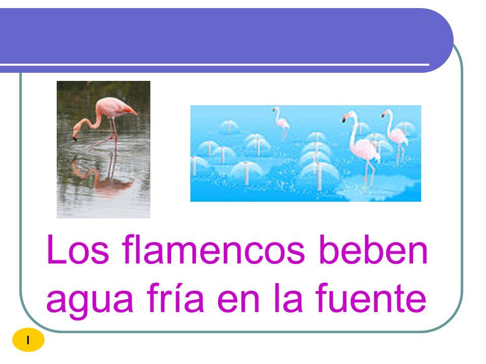 Los flamencos beben agua fría en la fuente