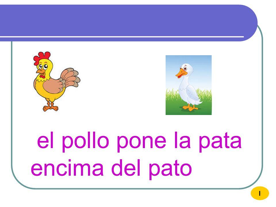 el pollo pone la pata encima del pato