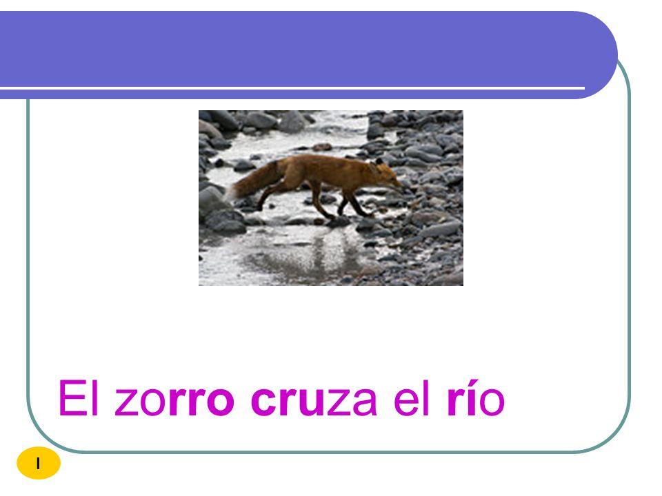 El zorro cruza el río I