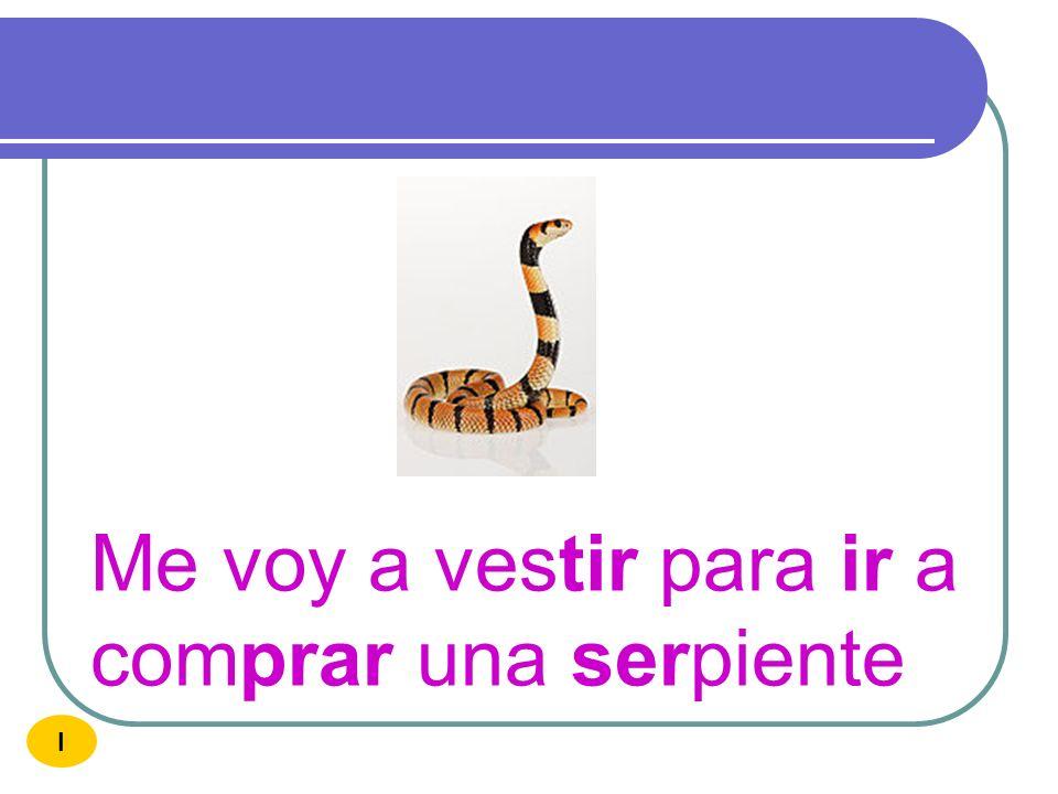 Me voy a vestir para ir a comprar una serpiente