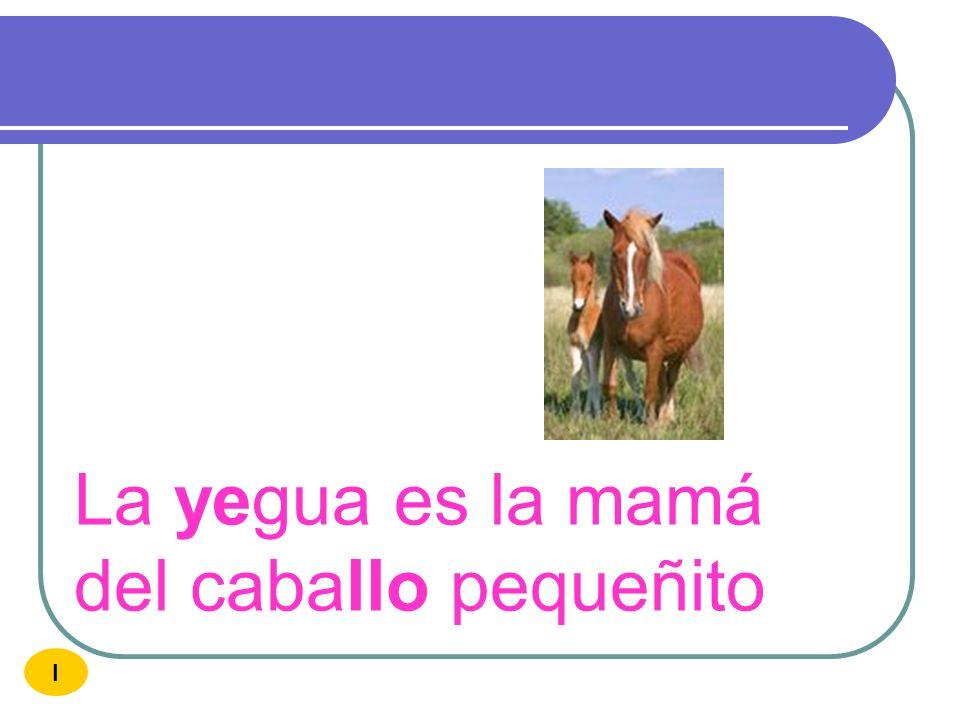 La yegua es la mamá del caballo pequeñito