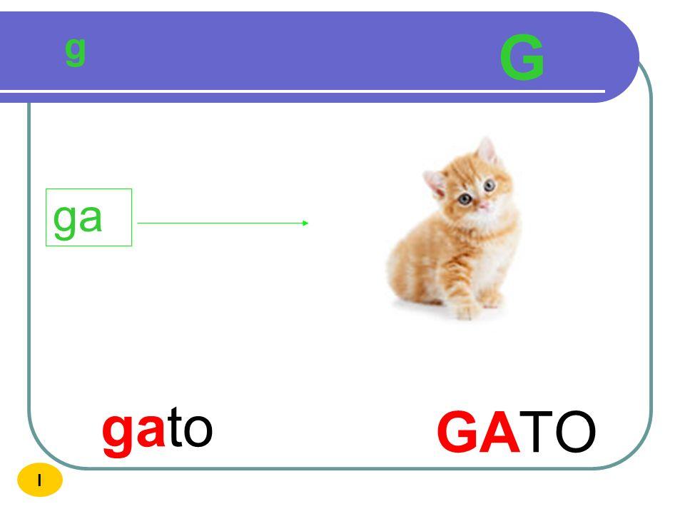 g G ga gato GATO I
