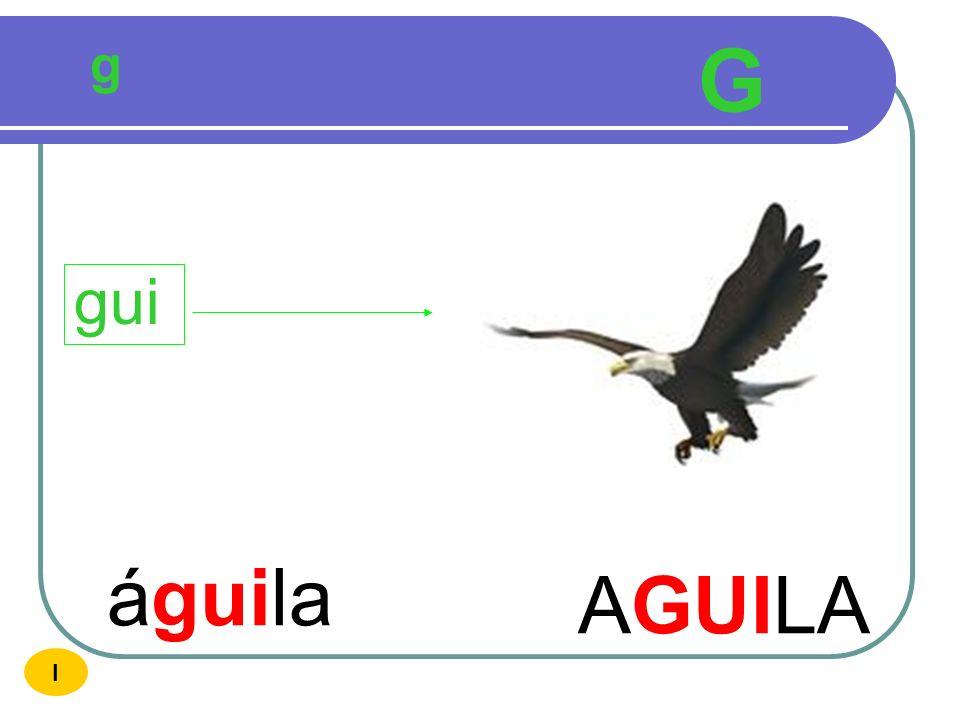 g G gui águila AGUILA I