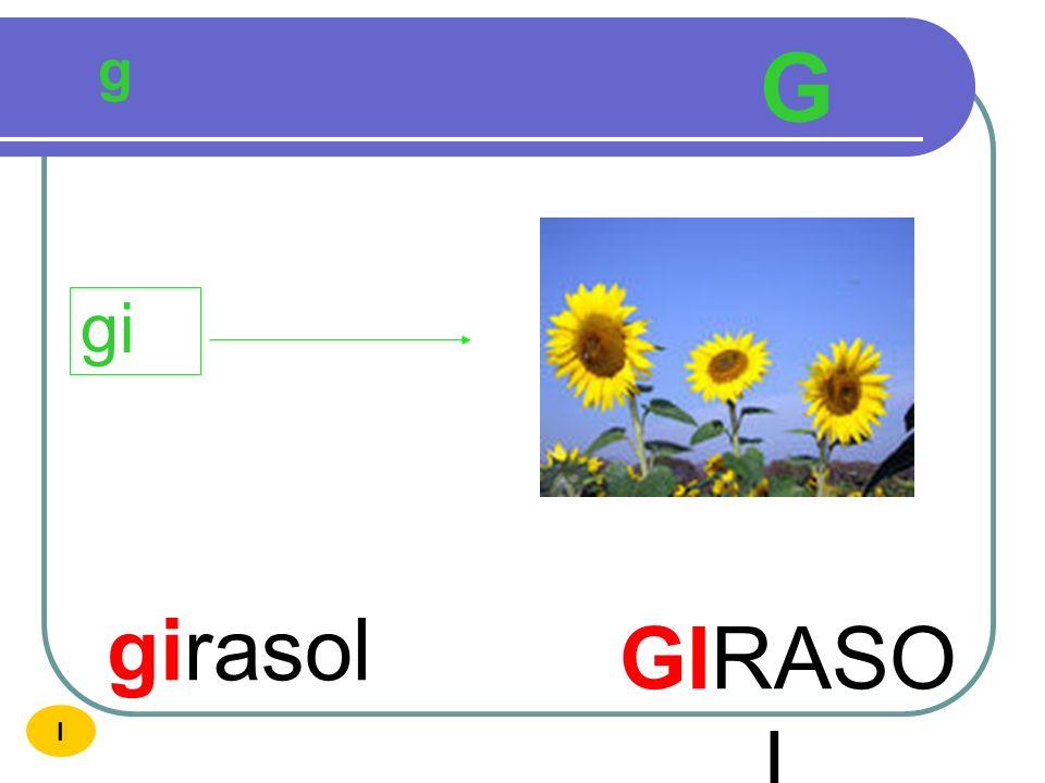 g G gi girasol GIRASOL I