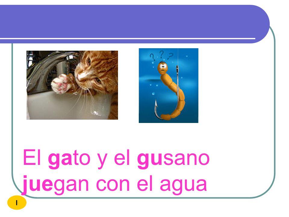 El gato y el gusano juegan con el agua