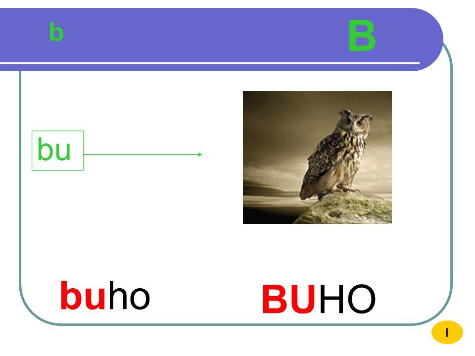B b bu buho BUHO I