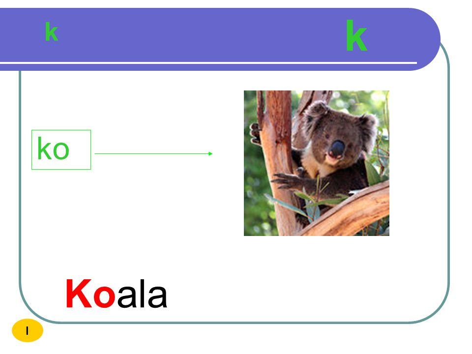 k k ko Koala I