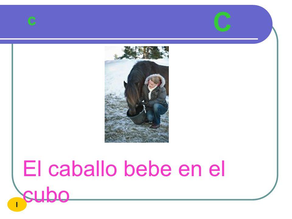 C c El caballo bebe en el cubo I