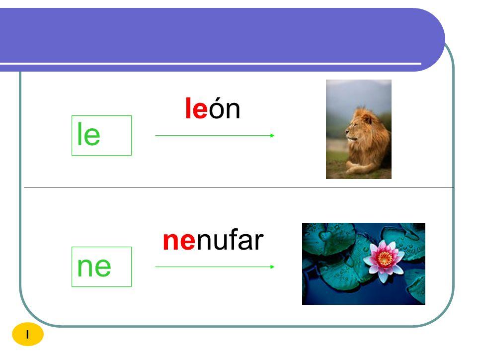 león le nenufar ne I