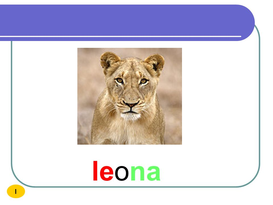 leona I