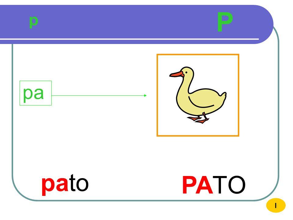 P p pa pato PATO I