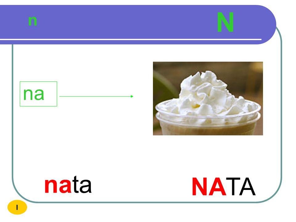 N n na nata NATA I