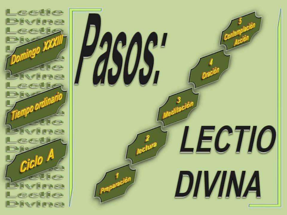 Lectio Divina. Pasos: 5. Contemplación. Acción. Domingo XXXIII. 4. Oración. 3. Meditación.