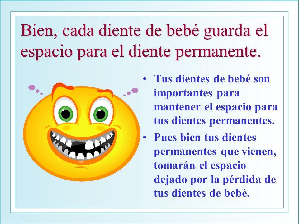 Bien, cada diente de bebé guarda el espacio para el diente permanente.
