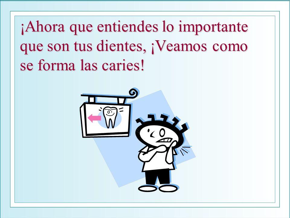 ¡Ahora que entiendes lo importante que son tus dientes, ¡Veamos como se forma las caries!