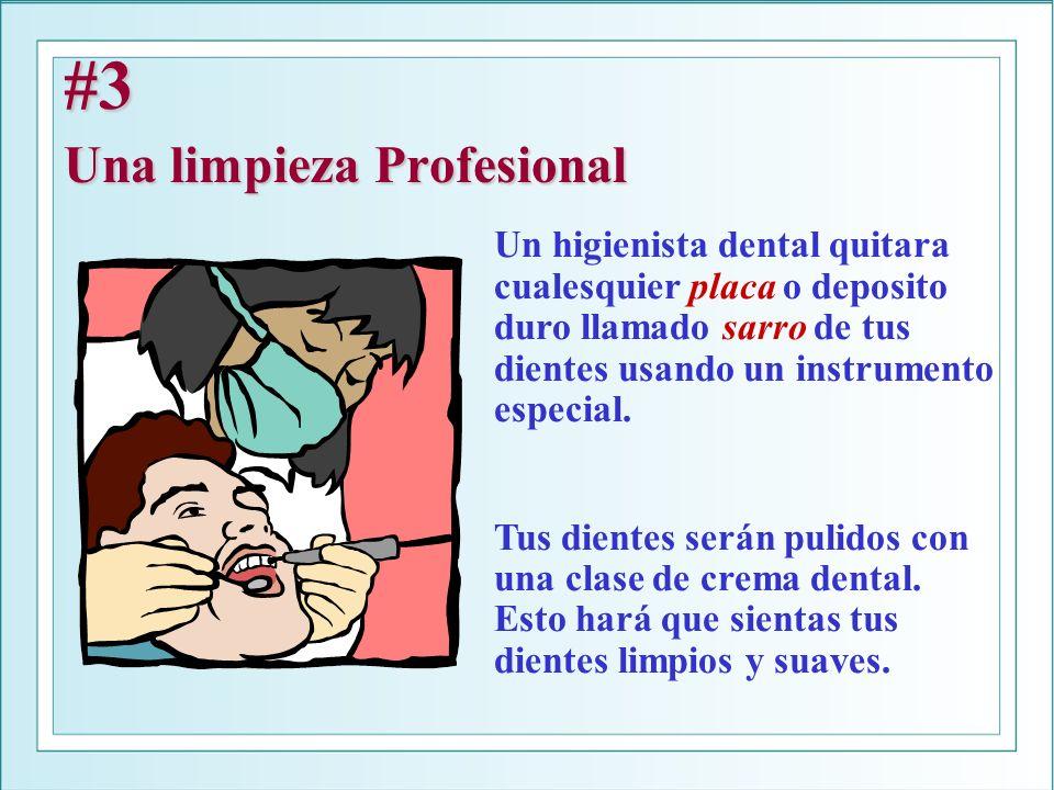 #3 Una limpieza Profesional