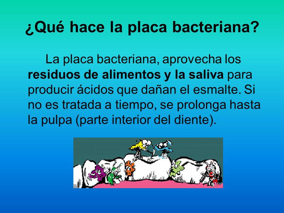 ¿Qué hace la placa bacteriana