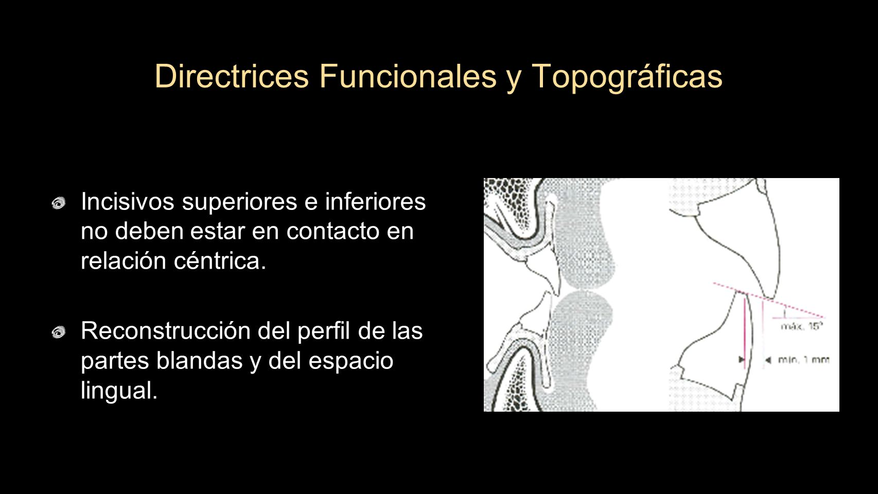 Directrices Funcionales y Topográficas