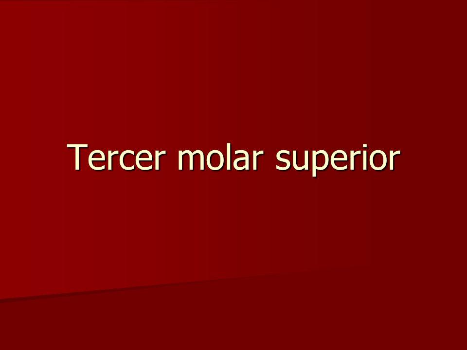 Tercer molar superior